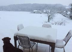 Neige Hagenthal-le-Bas 68220 10 cm de neige le 18 mars 18