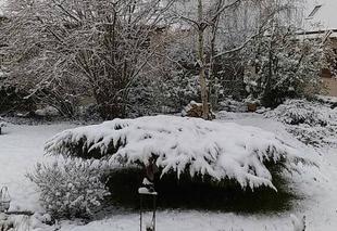 Neige Saint-Aubin-les-Elbeuf 76410 C'est le printemps demain !