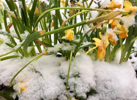 L?hiver n?est pas terminé !