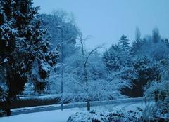 Neige Pleumeur-Bodou 22560 Pleumeur Bodou sous la neige