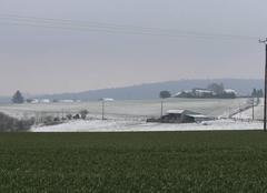 Neige Bonnemaison 14260 Demain, c'est le printemps...