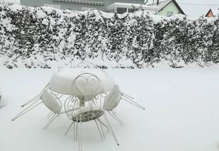 Neige Griesheim-Pres-Molsheim 67870 Neige en Alsace