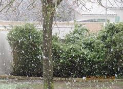 Neige Saint-Xandre 17138 Neige avant le printemps