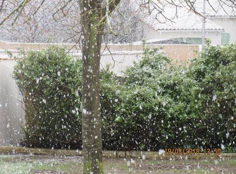 Neige avant le printemps
