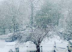 Neige L'Houmeau 17137 L?houmeau sous la neige