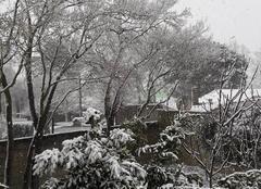 Neige Aytre 17440 Neige  à la  Rochelle