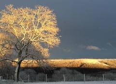 Neige Orignac 65200 Jolie vue enneigée