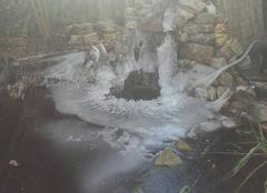 Froid Lozinghem 62540 Bassin pris dans la glace