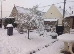Neige Epineuse 60190 L olivier sous son blanc manteau