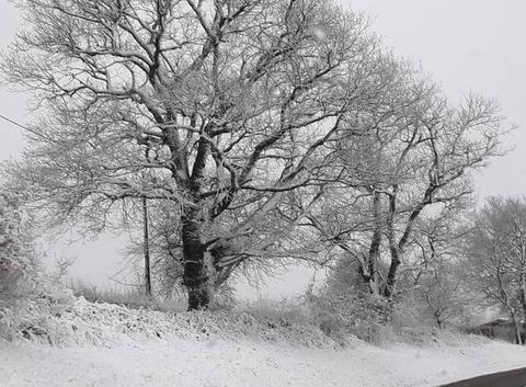 Printemps / hiver