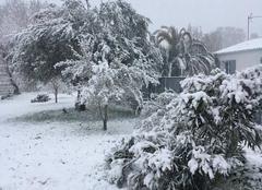 Neige Royan 17200 Dieu que c?est beau