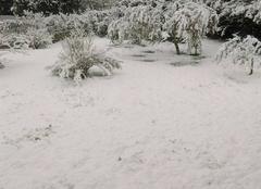 Neige Meounes-les-Montrieux 83136 Surprise du mercredi matin