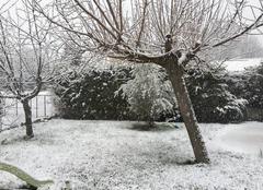 Neige Saint-Maximin-la-Sainte-Baume 83470 Neige au printemps
