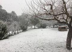Neige Fuveau 13710 Neige à FUVEAU