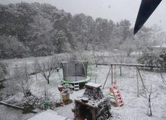 Neige Gemenos 13420 Mon jardin ce matin