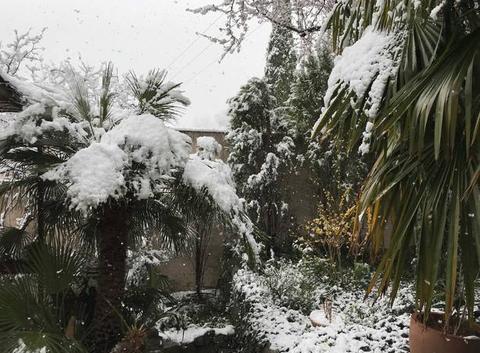 Neige à PEYPIN