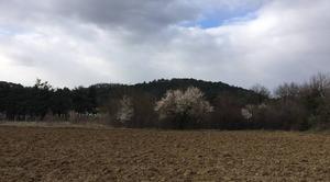 Nuages Mours-Saint-Eusebe 26540 Un bref aperçu du printemps sous une journée glaciale