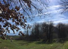 Ciel Mours-Saint-Eusebe 26540 Campagne au printemps sous le vent du Nord