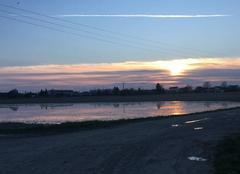 Ciel Marigny-le-Chatel 10350 Couché de soleil
