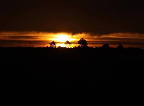 Lever de soleil sur les landes