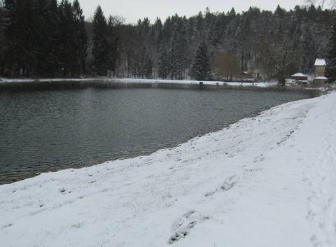 Neige surprise aux étangs de Longeau