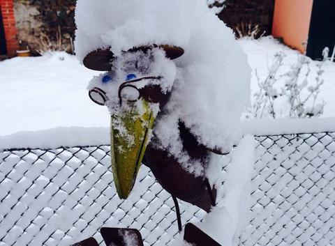 Corbeau sous la neige