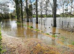 Pluie Chateaubriant 44110 La chere