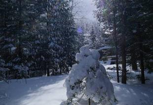 Neige Sainte-Agathe-des-Monts Canada neige