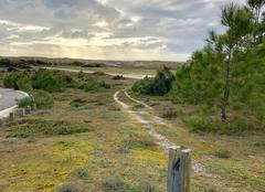 Ciel Le Verdon-sur-Mer 33123 Petit coin de nature