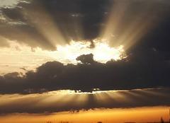 Ciel Chassagne-Montrachet 21190 Levé de soleil sur la bourgogne
