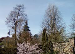 Ciel Marles-les-Mines 62540 Enfin le printemps !