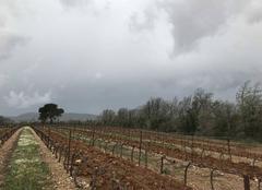 Nuages Pierrefeu-du-Var 83390 La pluie approche!!