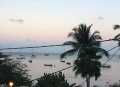 Mer Les Anses-d'Arlet 97217 Coucou de la Martinique