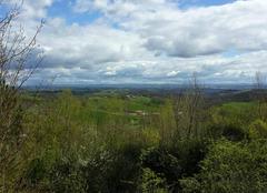 Faune/Flore Cagnac-les-Mines 81130 Journée printanière