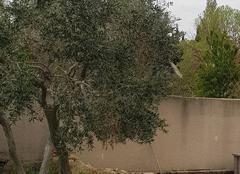 Nuages Lancon-Provence 13680 Temps