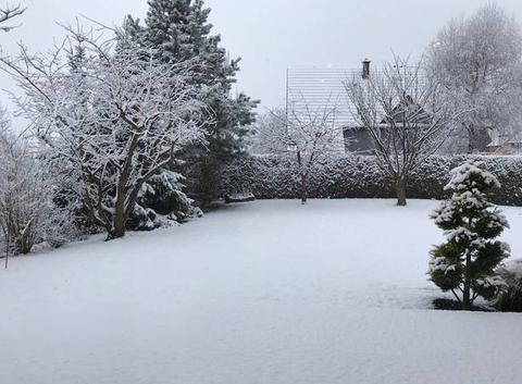 Neige à Westhoffen