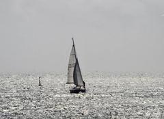 Mer La Trinite-sur-Mer 56470 Reflets d'argent