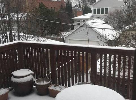 Neige !! Chicago au printemps