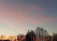 Ciel Saint-Remy-en-Bouzemont-Saint-Genest-et-Isson 51290 Splendide ciel rose