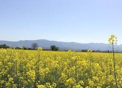 Ciel Mours-Saint-Eusebe 26540 Belles couleurs et chaleur en campagne