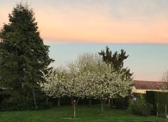 Ciel Milly-sur-Therain 60112 Avril  2018