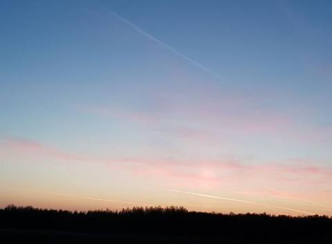 Des plumes roses dans le ciel