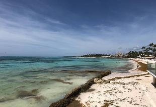 Chaleur Punta Cana ClubMed punta cana