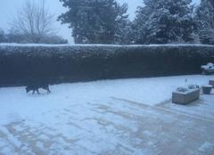 Neige Le Neubourg 27110 Episode neigeux