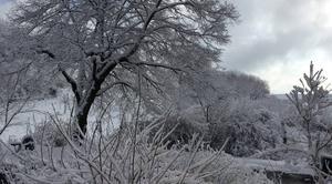 Neige Montfranc 12380 Magie d?hiver