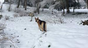 Neige Montfranc 12380 Joies de l?hiver