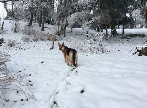 Joies de l?hiver