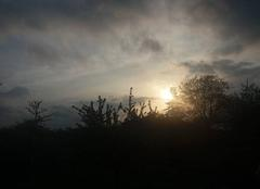 Ciel Lohr 67290 Le soleil se couche en Alsace.