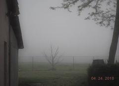 Brouillard Nogaret 31540 Brouillard en Lauragais.