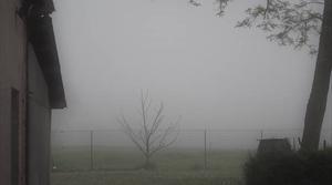 Brouillard en Lauragais.